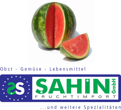 Willkommen auf SahinGmbH.de